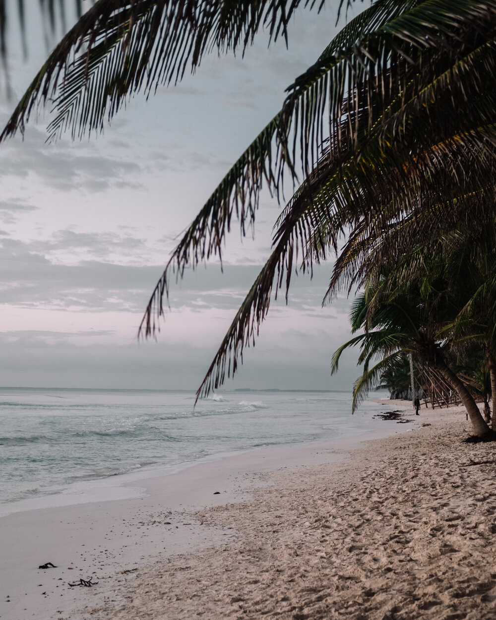 Rachel Off Duty: Palm Trees and an Empty Beach in Tulum, Mexico