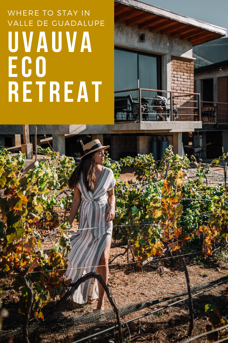 Rachel Off Duty: Where to Stay in Valle de Guadalupe: The UvaUva Eco Cabins