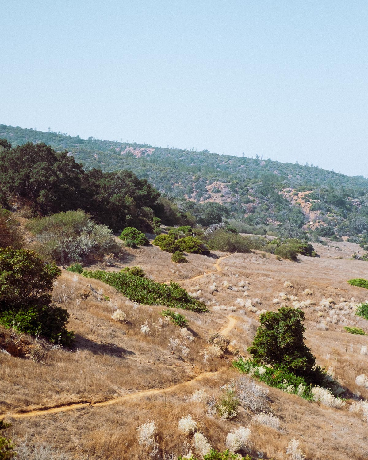 Rachel Off Duty: Hiking Trails at Channel Islands National Park