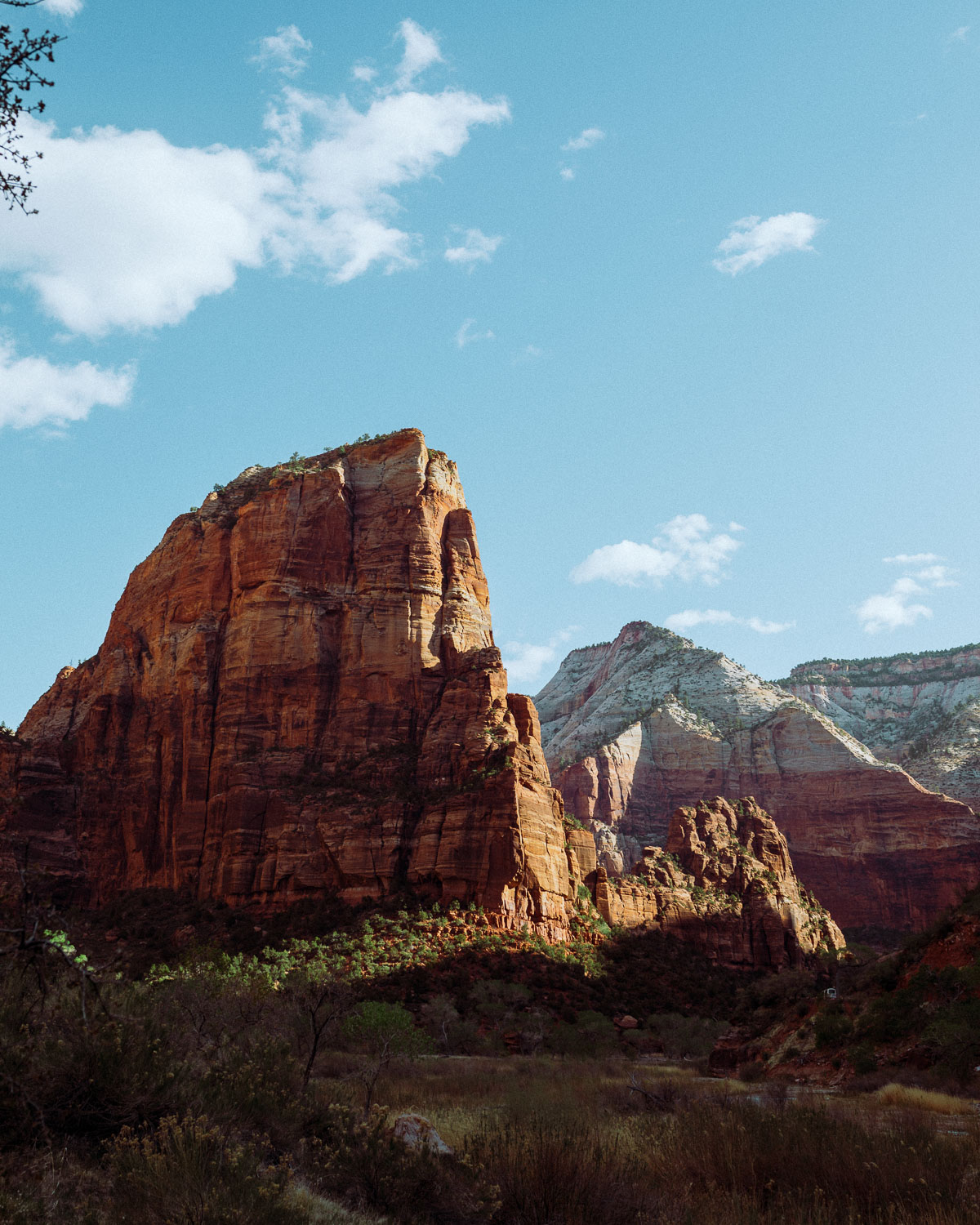 Rachel Off Duty: A Ground View of Angel's Landing in Zion National Park
